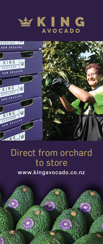 King Avocado Pull Up Banner
